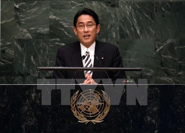 Le Japon devoile le plan d'aide pour la sub-region du Mekong hinh anh 1