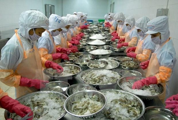 Hausse des exportations de crevettes aux Etats-Unis hinh anh 1