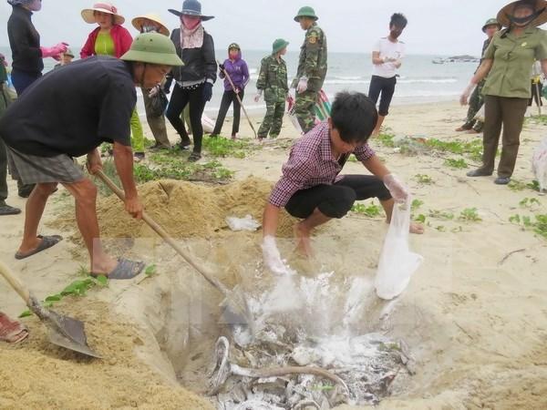 Aides d'urgence pour les gens affectes par la mort anormale de fruits de mer hinh anh 1