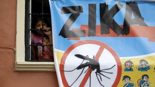 Aucun cas de virus Zika detecte a Ho Chi Minh-Ville hinh anh 1