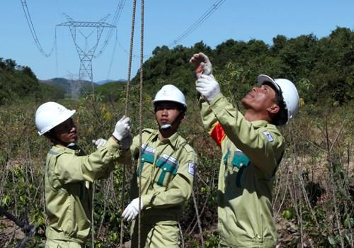 Approvisionnement en electricite pour les districts de Bac Tra My et de Nam Tra My hinh anh 1