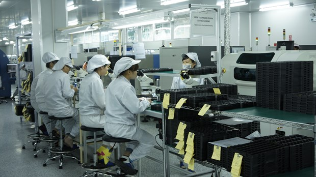 Pres de 13.000 entreprises ont repris leur activite depuis debut 2016 hinh anh 1