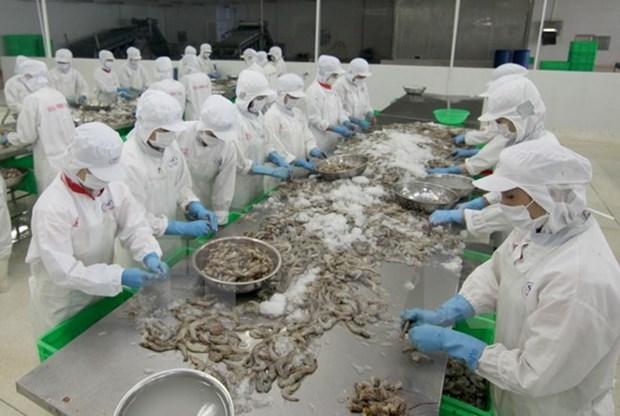 Crevettes : le Vietnam gagne des parts de marche en R. de Coree hinh anh 1