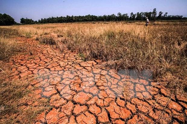 Des chercheurs americains discutent de la secheresse dans le Delta du Mekong hinh anh 1