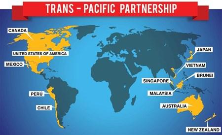 Pour que les PME profitent pleinement du TPP hinh anh 1