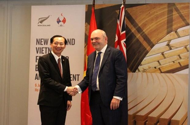 Projet de construction du pont de l'amitie Vietnam-Nouvelle-Zelande a HCM-Ville hinh anh 1