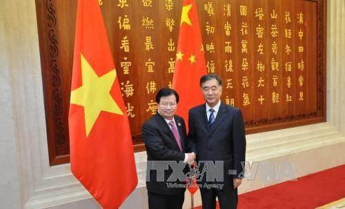 Entrevue entre les vice-PM Trinh Dinh Dung et Wang Yang hinh anh 1