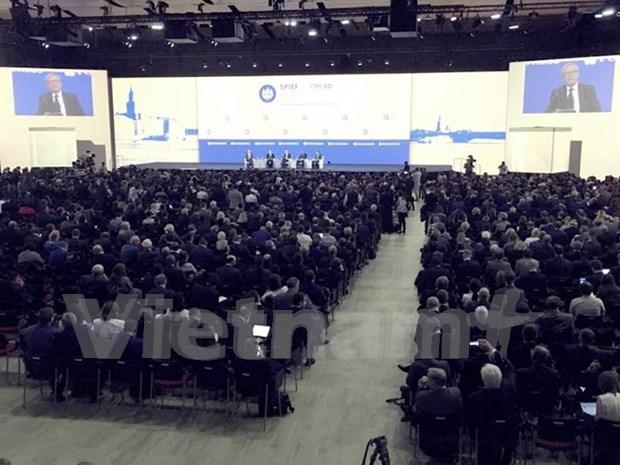 Le Vietnam au Forum economique international de Saint-Petersbourg hinh anh 1
