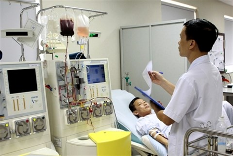 Un jeune Docteur vietnamien consacre sa vie aux cellules souches hinh anh 2