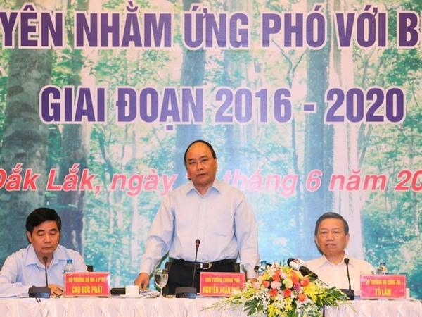 Tay Nguyen : mobiliser les synergies pour le developpement durable des forets hinh anh 1
