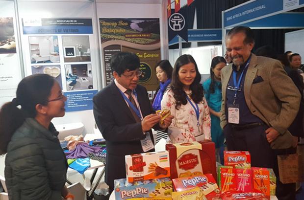 Vietnam et Afrique du Sud promeuvent leur cooperation economique hinh anh 1