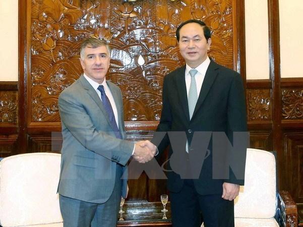 Le president Tran Dai Quang recoit les ambassadeurs argentin et birman hinh anh 1