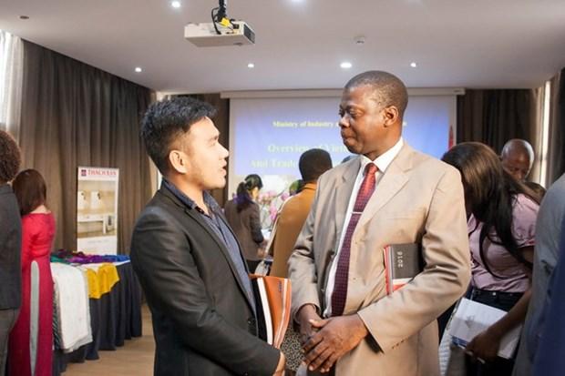 Renforcement de la cooperation economique Vietnam-Mozambique hinh anh 1