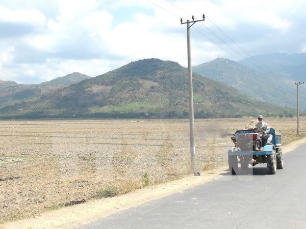 La BM soutient l'adaptation au changement climatique et la croissance verte au Vietnam hinh anh 1