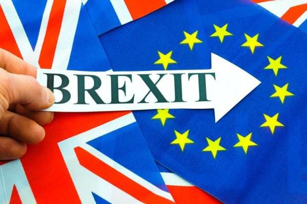 Brexit : l'UE insiste sur la feuille de route pour l'ALE avec le Vietnam hinh anh 1