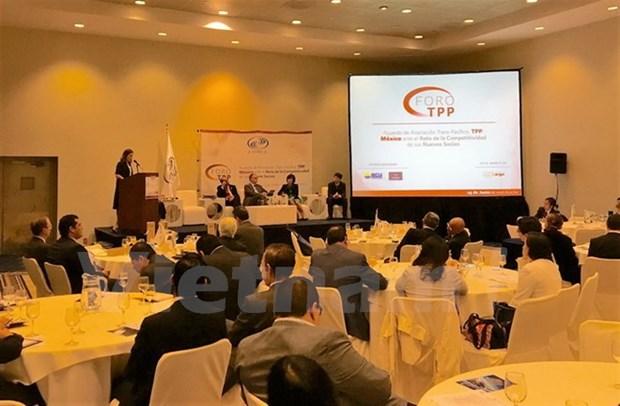 Le Vietnam au forum sur les opportunites et les defis du TPP au Mexique hinh anh 1