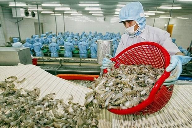 Brexit : tendance a la baisse des exportations de crevettes du Vietnam hinh anh 2
