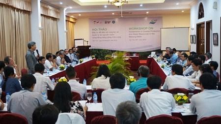Gerer les ressources en eau du Delta du Mekong hinh anh 1