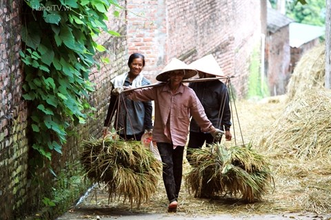 La palanche en bamboo hinh anh 1
