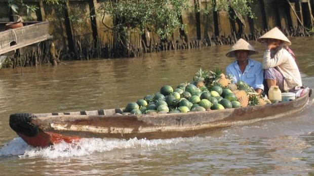 Fete touristique du marche flottant de Cai Rang hinh anh 1