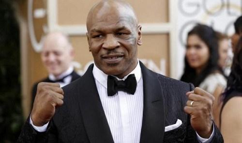 Mike Tyson participera au tournage d'un film hongkongais au Vietnam hinh anh 1