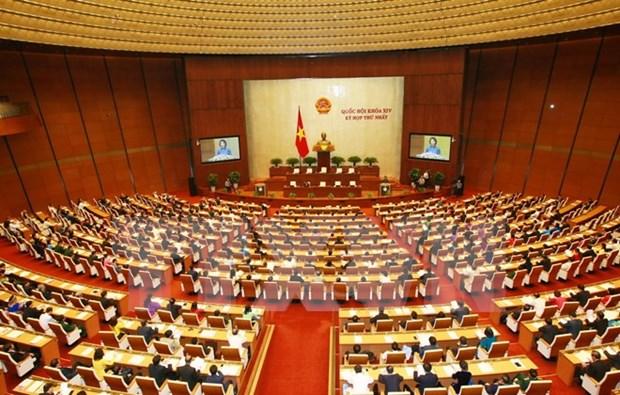 Premiere session de l'AN : pour entrer de plain-pied dans le nouveau mandat hinh anh 1