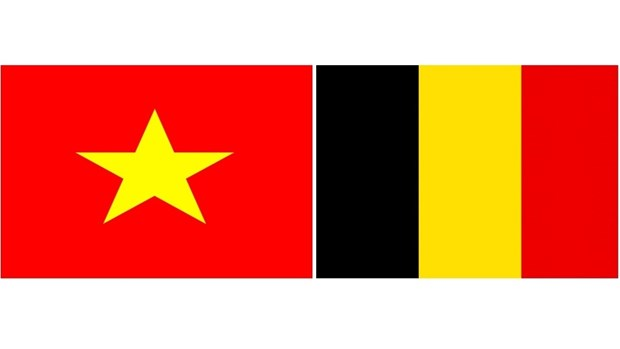 Celebration de la 185e Fete nationale de la Belgique hinh anh 1