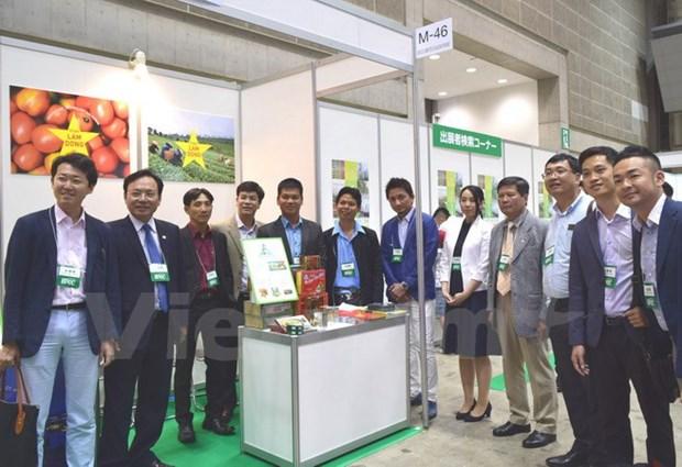 Sept entreprises de Lam Dong promeuvent leurs produits au Japon hinh anh 1