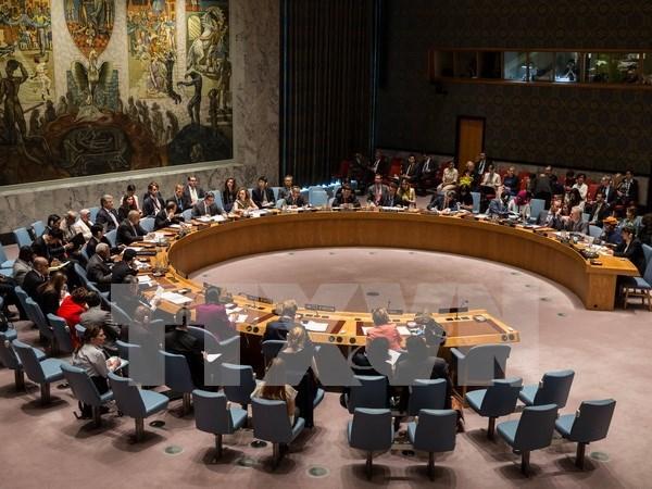 La Malaisie assume la presidence tournante du Conseil de securite de l'ONU hinh anh 1