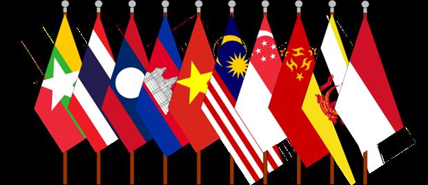 Commemoration de la fondation de l'ASEAN a Pretoria hinh anh 1