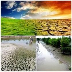 L'UNICEF aide le Vietnam a surmonter la secheresse et la salinisation hinh anh 1