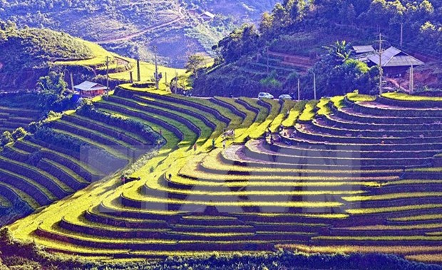 Les Semaines culturelles et touristiques de Muong Lo et Mu Cang Chai en septembe hinh anh 1