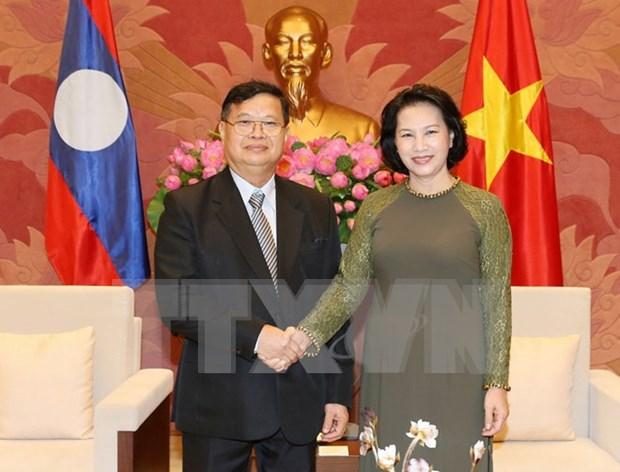 Renforcement des relations de cooperation legislative Vietnam-Laos hinh anh 1