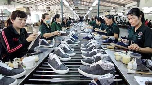 De nombreux produits vietnamiens beneficieront des privileges de la Russie hinh anh 1