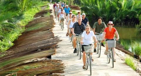 Le nombre de touristes etrangers au Vietnam s'accroit de 25,4% en 8 mois hinh anh 1