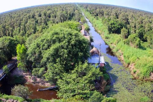 Pres de 400 milliards de dongs pour conserver le Parc national d'U Minh Ha hinh anh 1