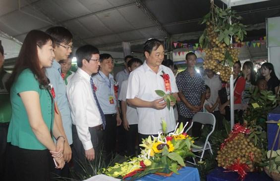 Ouverture de la Foire de l'agriculture et du commerce du Nord-Est 2016 hinh anh 1
