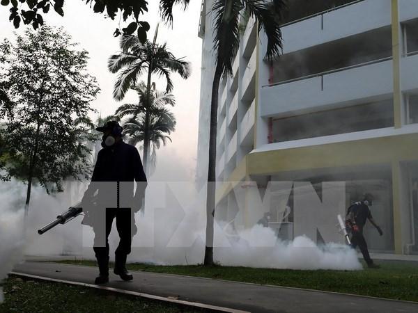 Nouveau cas de virus Zika signales a Singapour hinh anh 1