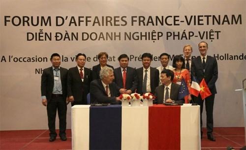 Des entreprises vietnamiennes et francaises intensifient leur cooperation dans l'agriculture hinh anh 1