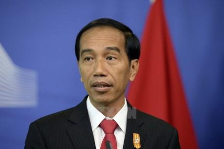 L'Indonesie tient en haute estime les relations ASEAN-Japon hinh anh 1