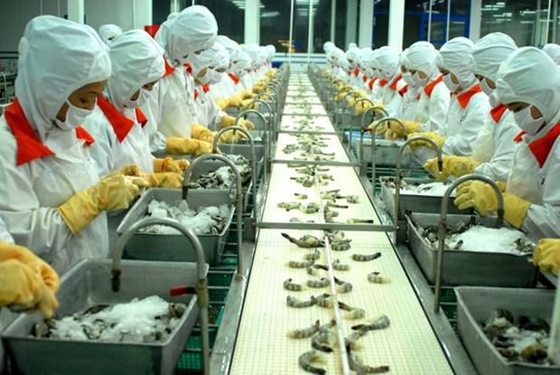 Opportunites pour les crevettes fraiches du Vietnam en Australie hinh anh 1