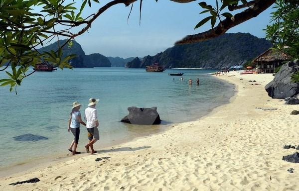 Dossier sur la baie d'Ha Long et l'archipel de Cat Ba pour l'UNESCO hinh anh 1