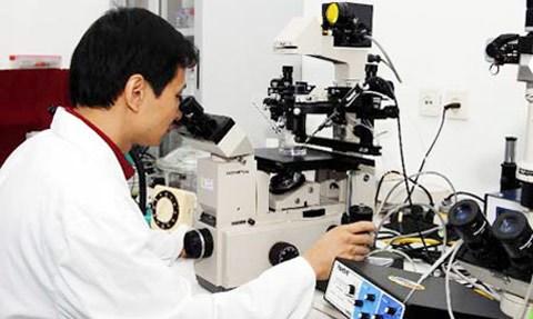Les scientifiques vietnamiens recoivent quatre subventions du programme PEER hinh anh 1