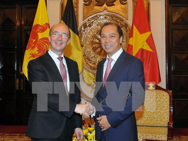 Mise en œuvre efficace du programme de cooperation entre le Vietnam et Wallonie-Bruxelles hinh anh 1