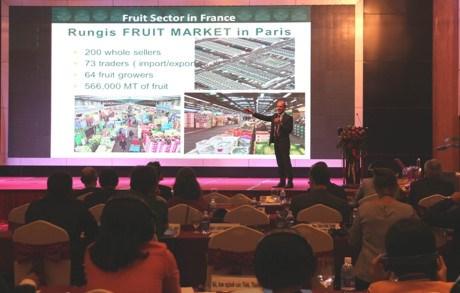 Le Vietnam lance un appel aux investisseurs francais pour 57 projets hinh anh 1