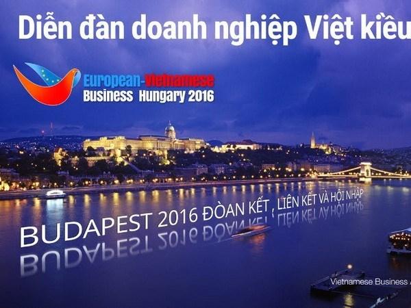 10e Forum d'affaires des Viet kieu europeens en Hongrie hinh anh 1