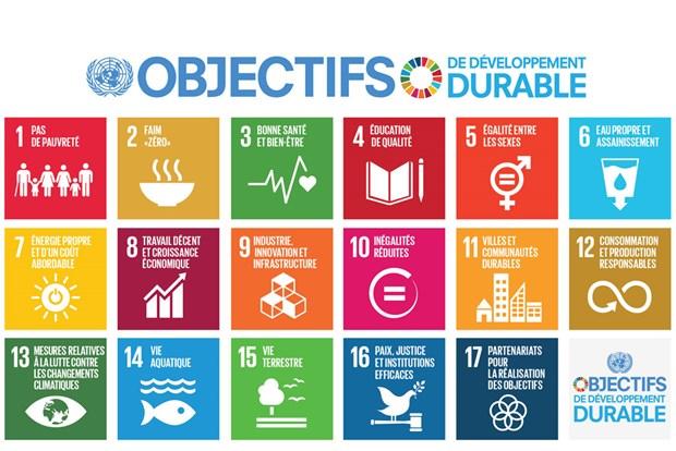 Sensibilisation du public aux objectifs de developpement durable hinh anh 1