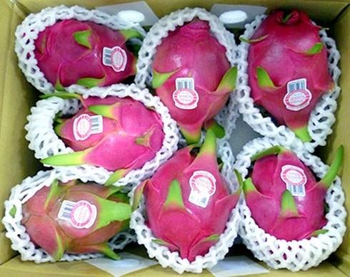 L'Australie donne son feu vert aux importations de fruits du dragon frais vietnamiens hinh anh 1