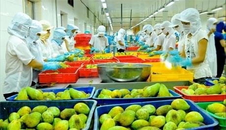 Les exportations de fruits et legumes pourraient atteindre 2,6 milliards de dollars cette annee hinh anh 1
