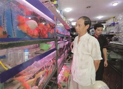 L'aquariophilie, une passion des Hanoiens hinh anh 3